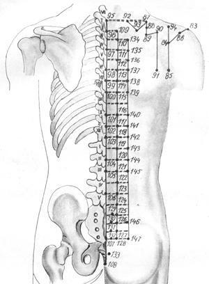 Что можно увидеть на рентгене грудного отдела позвоночника