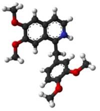 Папаверин таблетки от чего помогают