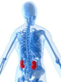 Почему возникает тяжесть в ногах ниже колена и ее лечение