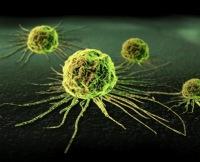 Вакцина против вируса папилломы человека