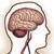 головная боль после операции по отслойке сетчатки