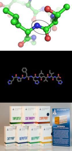 Пептидные препараты для мозга