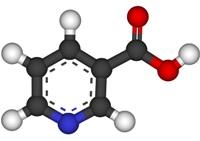 Никотиновая кислота и комбилипен уколы