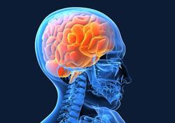 Нейрохирургические заболевания головного мозга