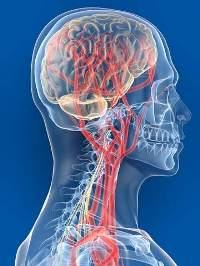 Частые головные боли в висках у женщин при беременности и гормональные боли: причины и лечение