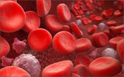 Как снизить эритроциты в крови
