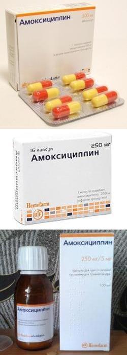 амоксициллин сандоз 1г инструкция по применению - фото 11