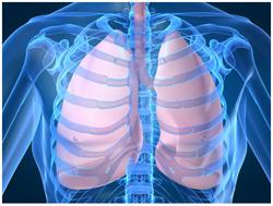 Рентген грудной клетки. Рентгенографическая картина деформаций грудной клетки. Диагностика заболеваний легких и сердца с помощью рентгенографии грудной клетки