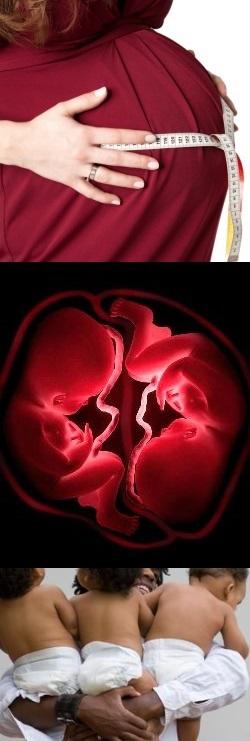 Многоплодная беременность и близнецы