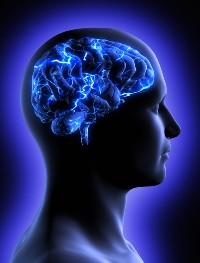 Ноотропы: витамины для мозга, зачем они нужны