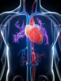 Пропранолол при инфаркте миокарда