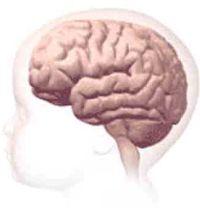Спастическая диплегия, ДЦП: причины, симптомы, лечение