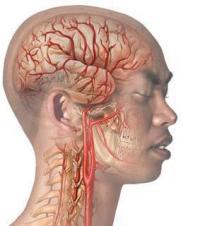 Боль в затылке головы причины давление