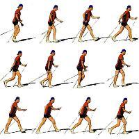финская ходьба с палками инструкция