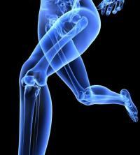 Есть ли нервные окончания в костях - анализы, диета, причины, травы