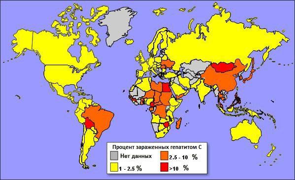 Чеснок и хронический гепатит