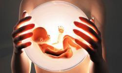 Признаки многоводия при беременности