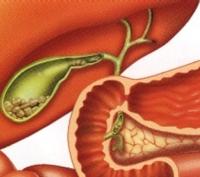 Почему болит желудок после фгдс и биопсии — АНТИ-РАК