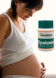 Можно ли принимать цистон при беременности