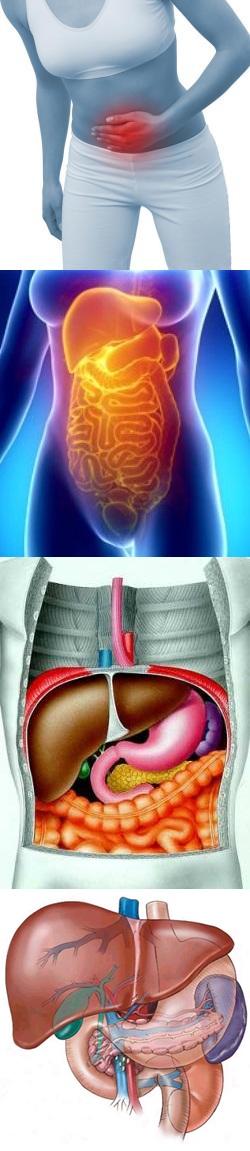Боль в области кишечника, которая возникает вследствие поражений других органов