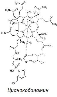 Описание и инструкции для Витамина В12 в ампулах и в других формах
