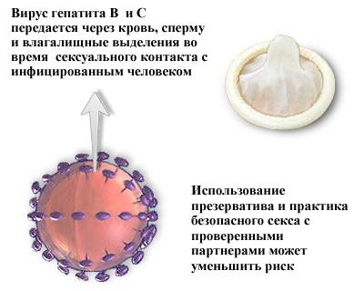 Гепатит b оральный секс