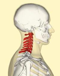 Боли в спине и колит Лечение боли в спине