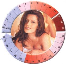 Секс в менструальный цикл