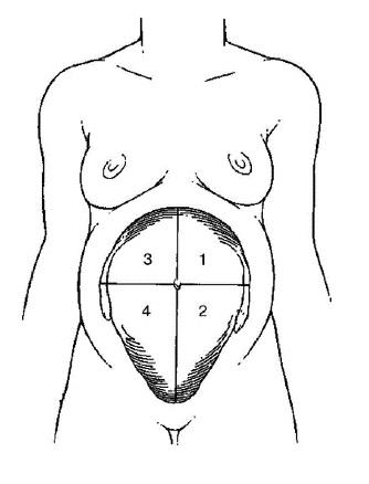 malovodie ab2 - Причины, диагностика и лечение маловодия у беременных