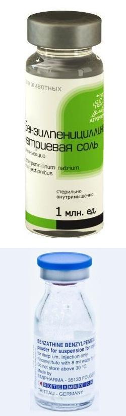 пенициллин натриевая соль инструкция по применению