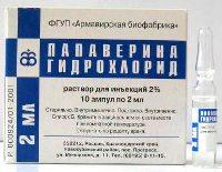 Папаверин ампулы 2%, 2 мл, 10 шт. Купить в москве, цена в интернет.