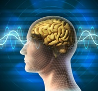 Экг головного мозга как делается