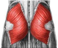 Сильные боли в ягодице при межпозвоночной грыже