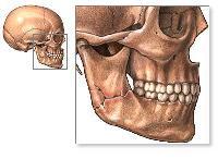 Хруст в суставе нижней челюсти метастазы деформирующий артроз фаланговых суставов ног