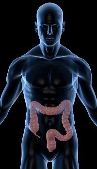 Лекарства для очищения кишечника перед колоноскопией: обзор препаратов, инструкция по применению, отзывы