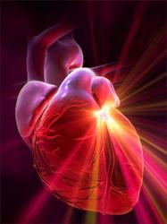 Можно заниматься спортом при сердечной недостаточности -