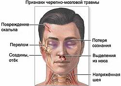 Адреса поликлиник мвд в москве