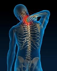Можно ли есть перед рентгеном грудного отдела позвоночника