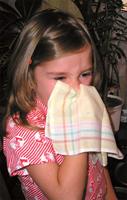 Аллергический ринит, или сенная лихорадка, или поллиноз у детей - это аллергическая реакция на пыльцу цветущих...