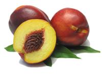 ...селекции персиков и не является...