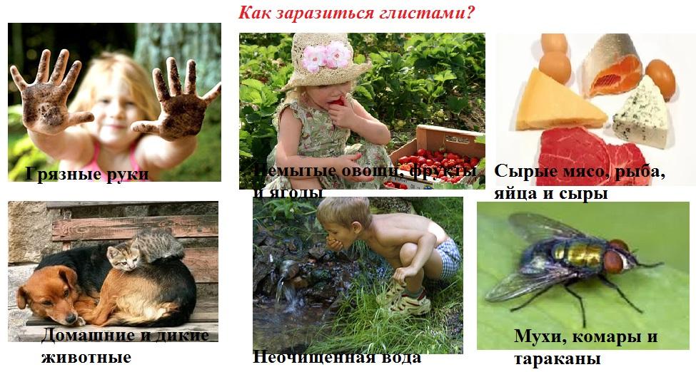 Симптомы очищения от паразитов