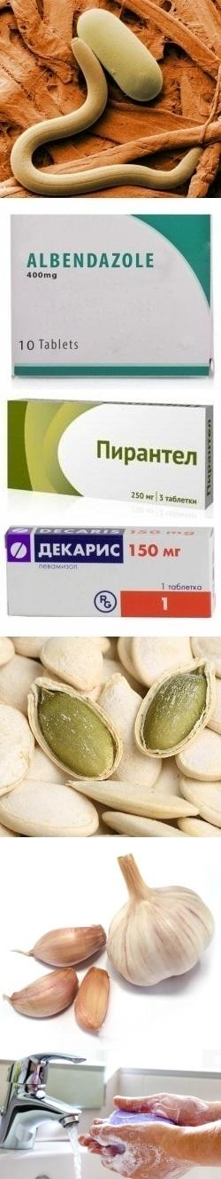 Лекарства от глистов народные средства
