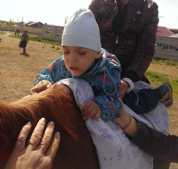 Иппотерапия (лечебная верховая езда) – история метода, лечебные эффекты, показания и противопоказания, упражнения на лошади, лечение ДЦП и аутизма у детей, иппотерапия инвалидов