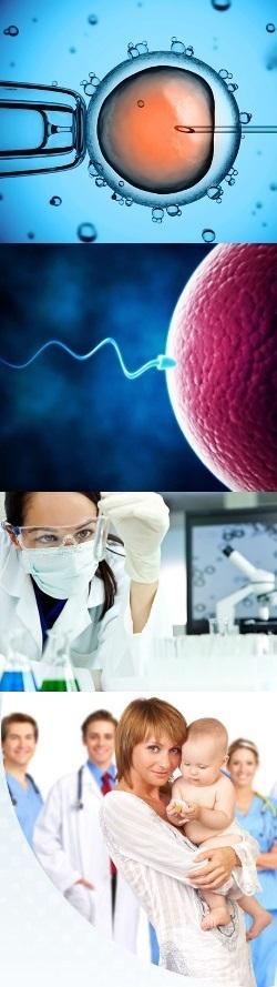 Кто делал искусственое гомологическое осеменение спермой мужа