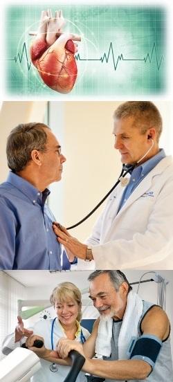 Эндокринолог проблемы. Какие анализы назначает эндокринолог? Какие органы входят в эндокринную систему