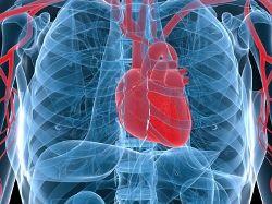 ❶ Как записаться к кардиологу 🚩 запись на прием к кардиологу 🚩 Медицинские учреждения