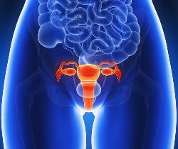 Как лечить воспаление матки в домашних условиях