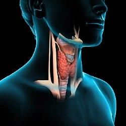 Чем лечить перелом основания черепа