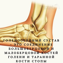 Узи коленного сустава норма