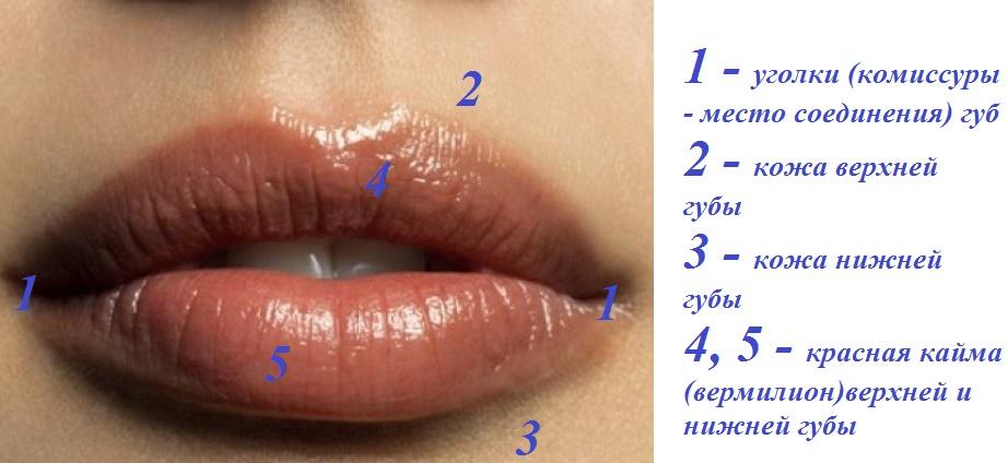 Трещины в уголках губ причины и у взрослого и ребенка